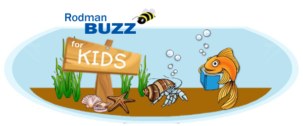 Rodman Buzz for Kids